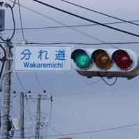 wakaremichi00